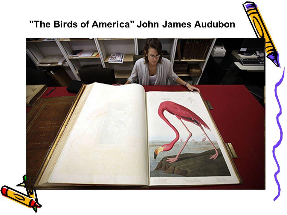 The Birds of America John James Audubon