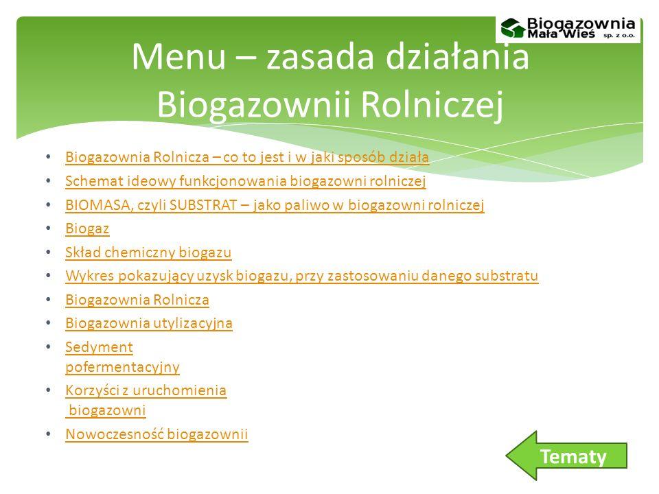 RYNEK BIOGAZU W POLSCE: Wsparcie dla produkcji energii w OZE. Menu