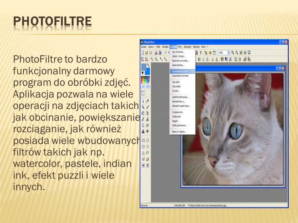 PhotoFiltre to bardzo funkcjonalny darmowy program do obróbki zdjęć. Aplikacja pozwala na wiele operacji na zdjęciach takich jak obcinanie, powiększan