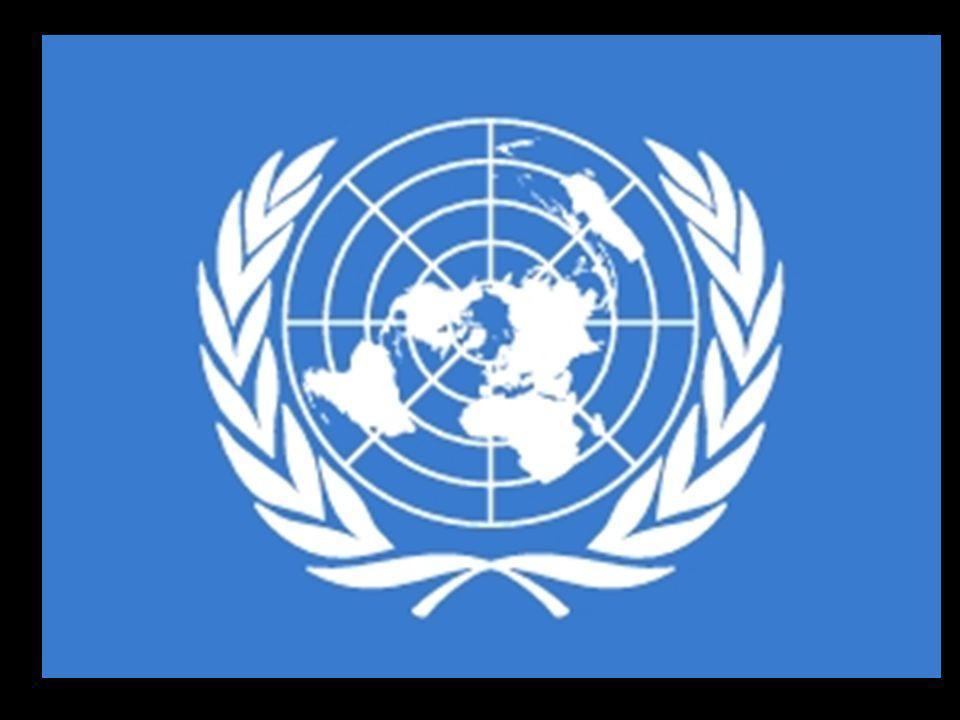 Organizacje broniące praw człowieka: Polska Akcja Humanitarna Amnesty International Helsińska Fundacja Praw Człowieka Komitet Ochrony Praw Dziecka Polski Komitet UNICEF Human Rights Watch Centrum Monitoringu Wolności Prasy