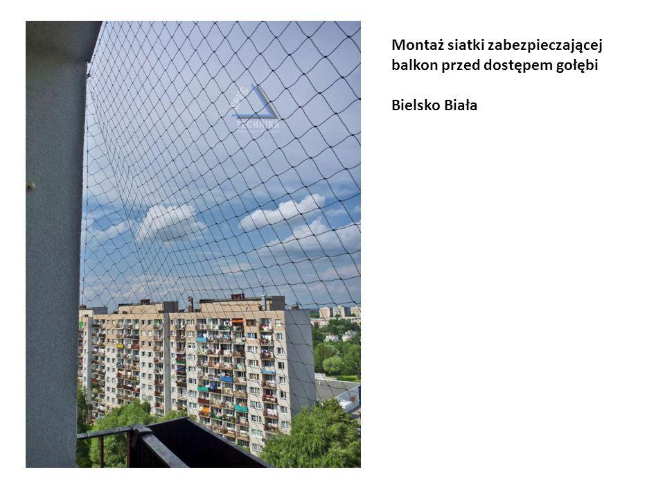 Montaż siatki zabezpieczającej balkon przed dostępem gołębi Bielsko Biała