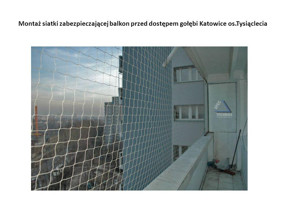 Montaż siatki zabezpieczającej balkon przed dostępem gołębi Katowice os.Tysiąclecia