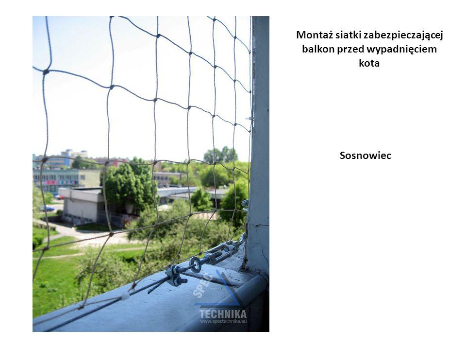 Montaż siatki zabezpieczającej balkon przed wypadnięciem kota Sosnowiec