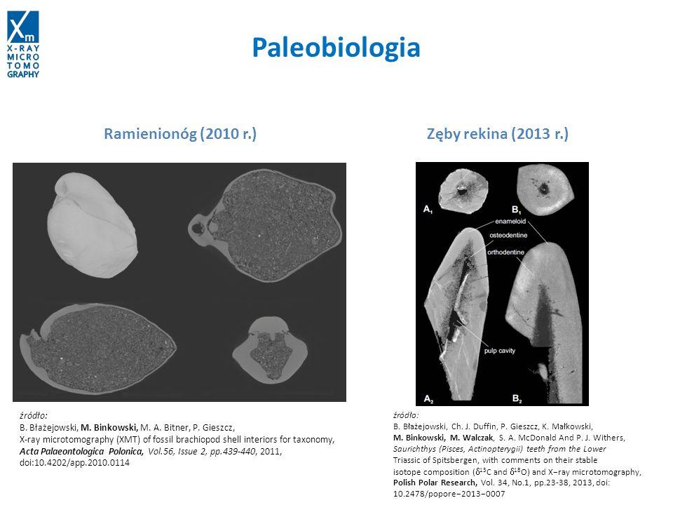 Paleobiologia Voxel size: 22.4x22.4x22.4 µm Ramienionóg (2010 r.) Zęby rekina (2013 r.) źródło: B. Błażejowski, M. Binkowski, M. A. Bitner, P. Gieszcz
