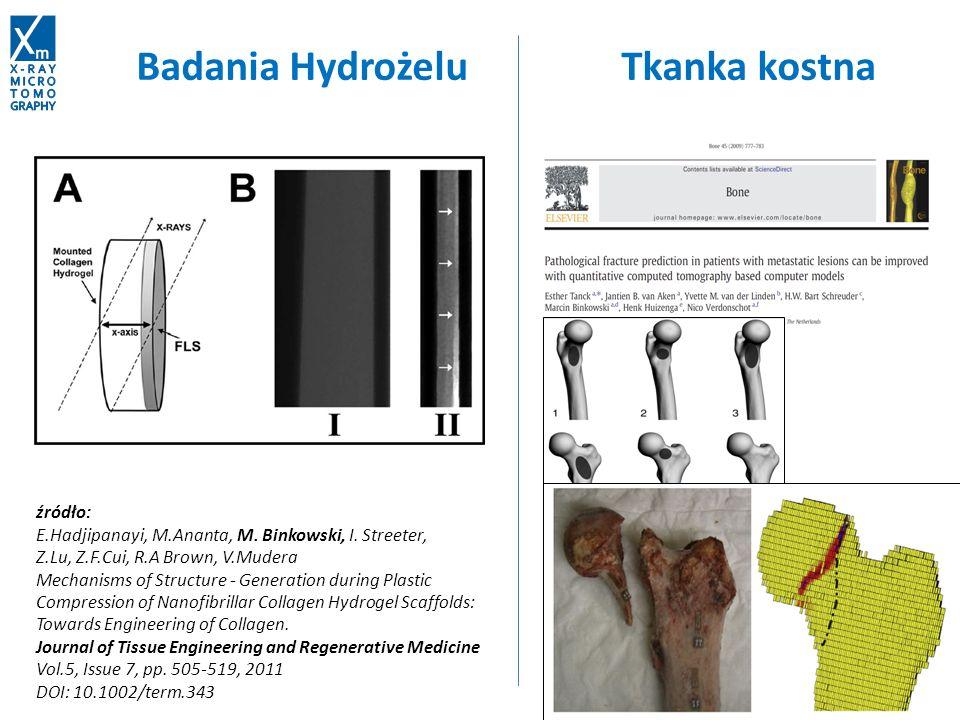źródło: E.Hadjipanayi, M.Ananta, M. Binkowski, I. Streeter, Z.Lu, Z.F.Cui, R.A Brown, V.Mudera Mechanisms of Structure - Generation during Plastic Com
