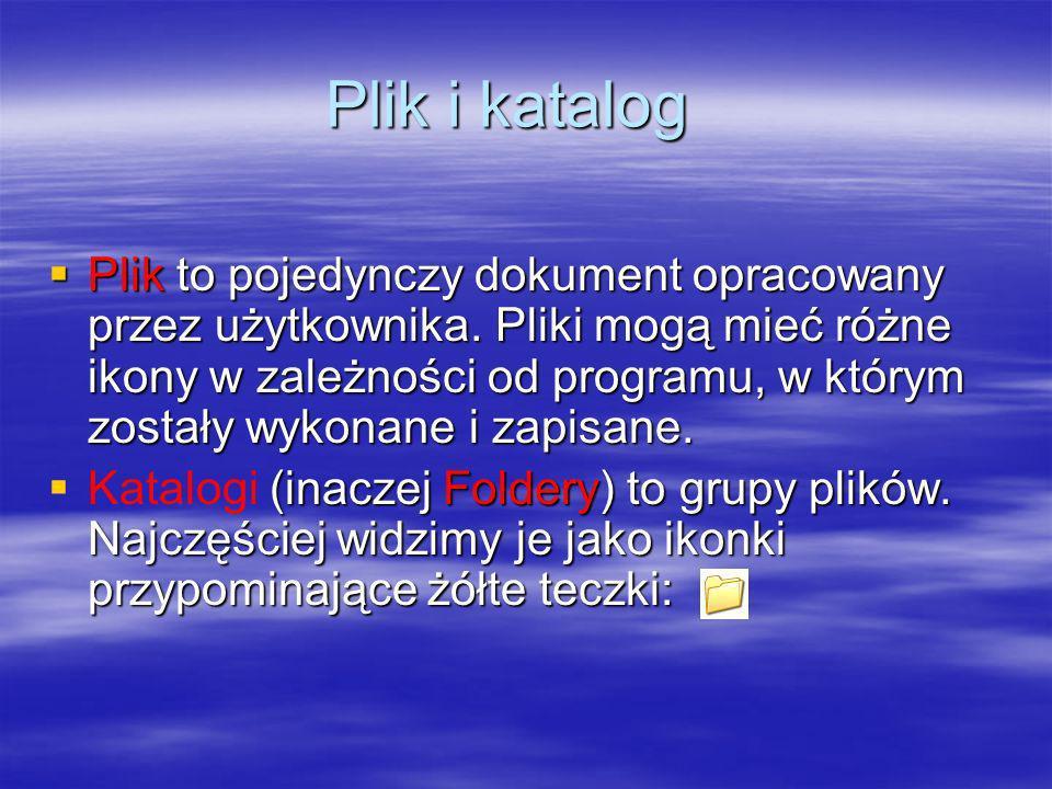 Plik i katalog Plik to pojedynczy dokument opracowany przez użytkownika. Pliki mogą mieć różne ikony w zależności od programu, w którym zostały wykona