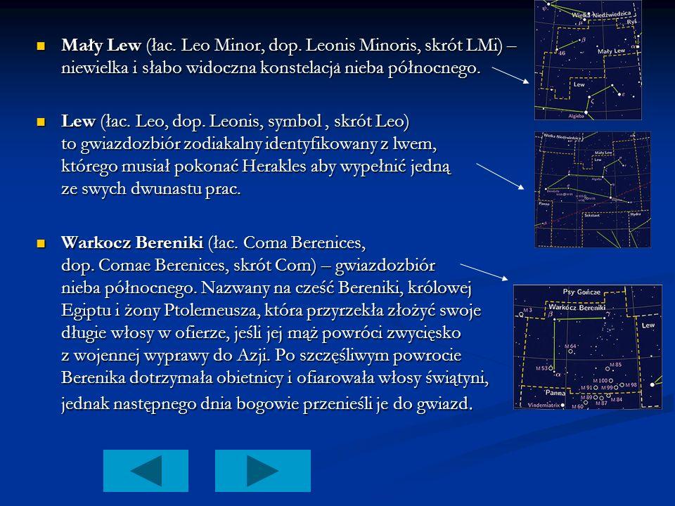 . Mały Lew (łac. Leo Minor, dop. Leonis Minoris, skrót LMi) – niewielka i słabo widoczna konstelacja nieba północnego. Mały Lew (łac. Leo Minor, dop.