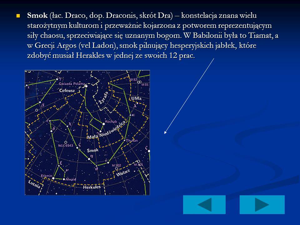 . Smok (łac. Draco, dop. Draconis, skrót Dra) – konstelacja znana wielu starożytnym kulturom i przeważnie kojarzona z potworem reprezentującym siły ch
