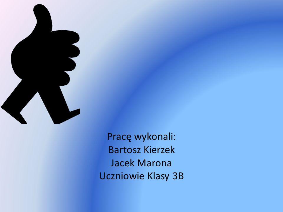 Pracę wykonali: Bartosz Kierzek Jacek Marona Uczniowie Klasy 3B