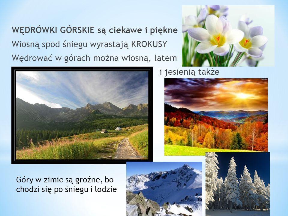 WĘDRÓWKI GÓRSKIE są ciekawe i piękne Wiosną spod śniegu wyrastają KROKUSY Wędrować w górach można wiosną, latem i jesienią także Góry w zimie są groźn