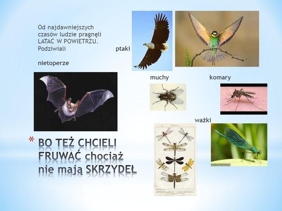 Od najdawniejszych czasów ludzie pragnęli LATAĆ W POWIETRZU. Podziwiali ptaki nietoperze muchy komary BO TEŻ CHCE BO TE BO ważki