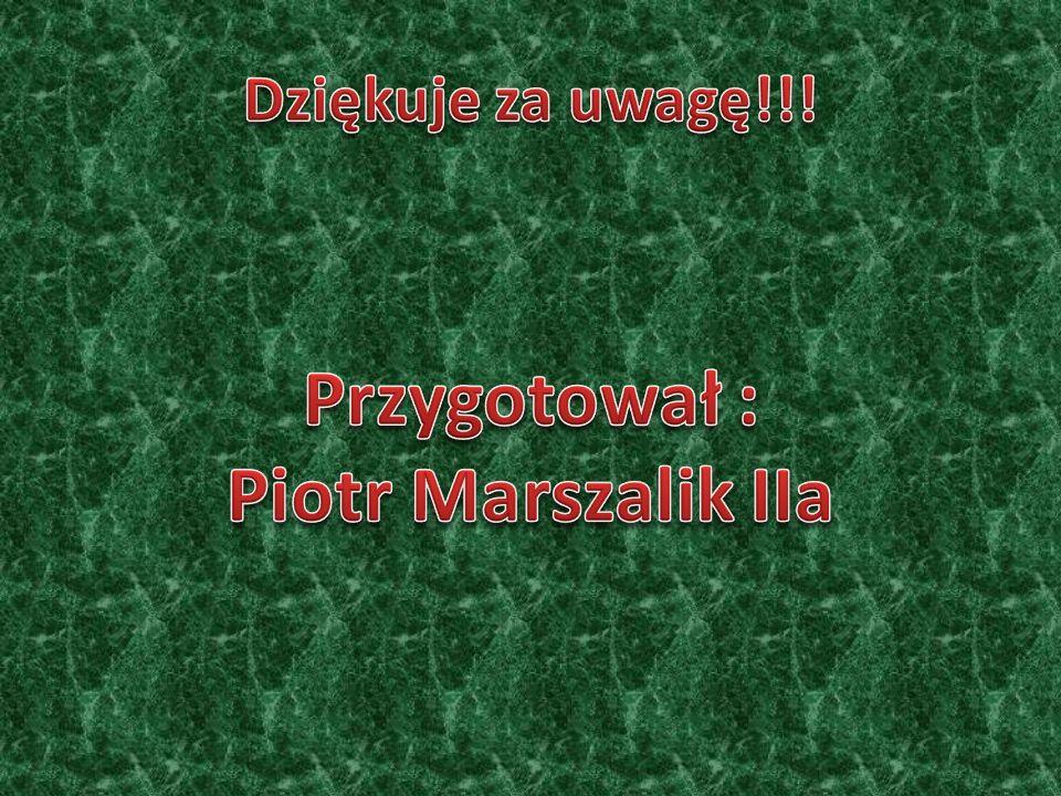 Miasto Koło Miasto zostało lokowane w 1362 na wyspie rzecznej przez Kazimierza Wielkiego. Położone w dogodnym miejscu, nie posiadało murów obronnych.