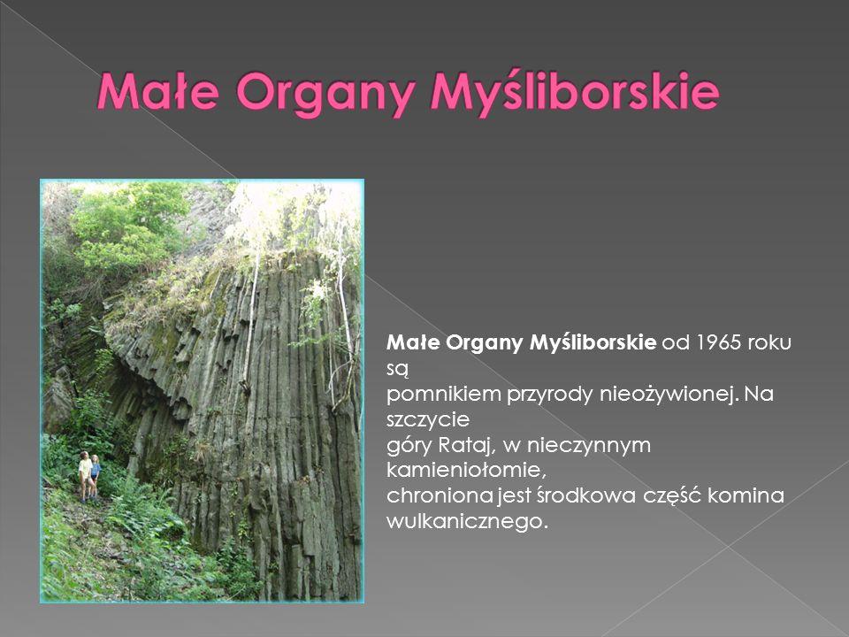 Małe Organy Myśliborskie od 1965 roku są pomnikiem przyrody nieożywionej. Na szczycie góry Rataj, w nieczynnym kamieniołomie, chroniona jest środkowa