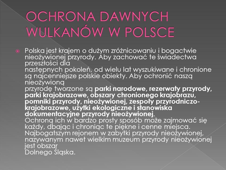 Polska jest krajem o dużym zróżnicowaniu i bogactwie nieożywionej przyrody. Aby zachować te świadectwa przeszłości dla następnych pokoleń, od wielu la
