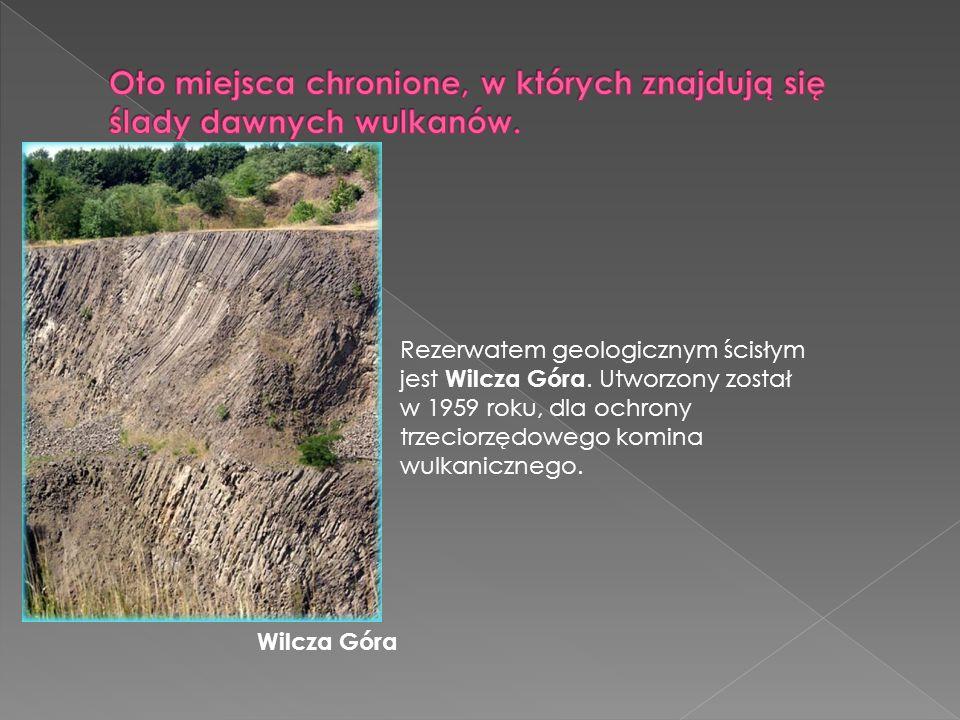 Rezerwatem geologicznym ścisłym jest Wilcza Góra. Utworzony został w 1959 roku, dla ochrony trzeciorzędowego komina wulkanicznego. Wilcza Góra