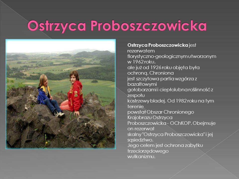 Ostrzyca Proboszczowicka jest rezerwatem florystyczno-geologicznym utworzonym w 1962 roku, ale już od 1926 roku objęta była ochroną. Chroniona jest sz