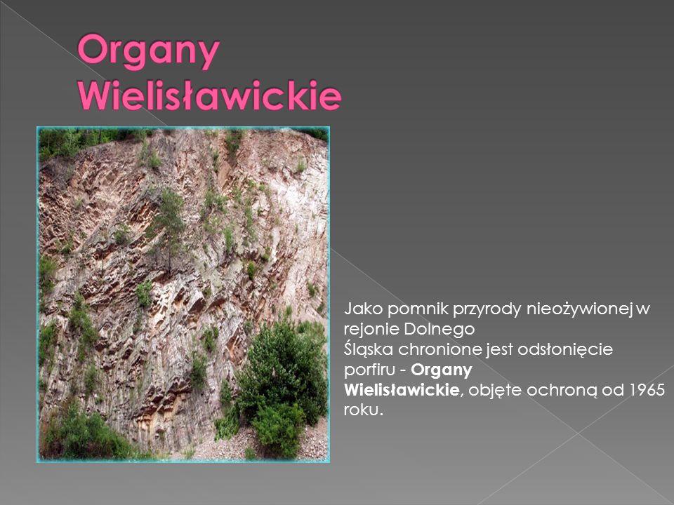 Od 1991 roku objęta ochroną jako pomnik przyrody nieożywionej jest Czartowska Skałka będąca czopem wulkanicznym.