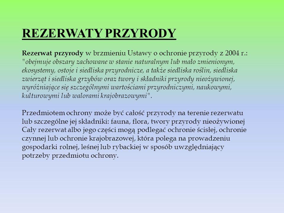 REZERWATY PRZYRODY Rezerwat przyrody w brzmieniu Ustawy o ochronie przyrody z 2004 r.: