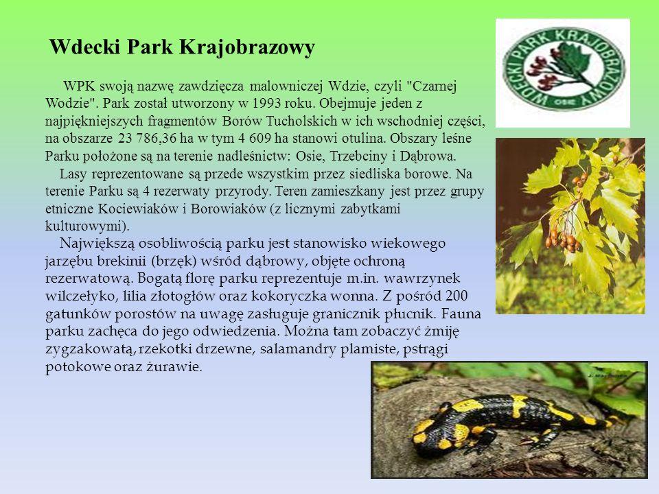 Wdecki Park Krajobrazowy WPK swoją nazwę zawdzięcza malowniczej Wdzie, czyli
