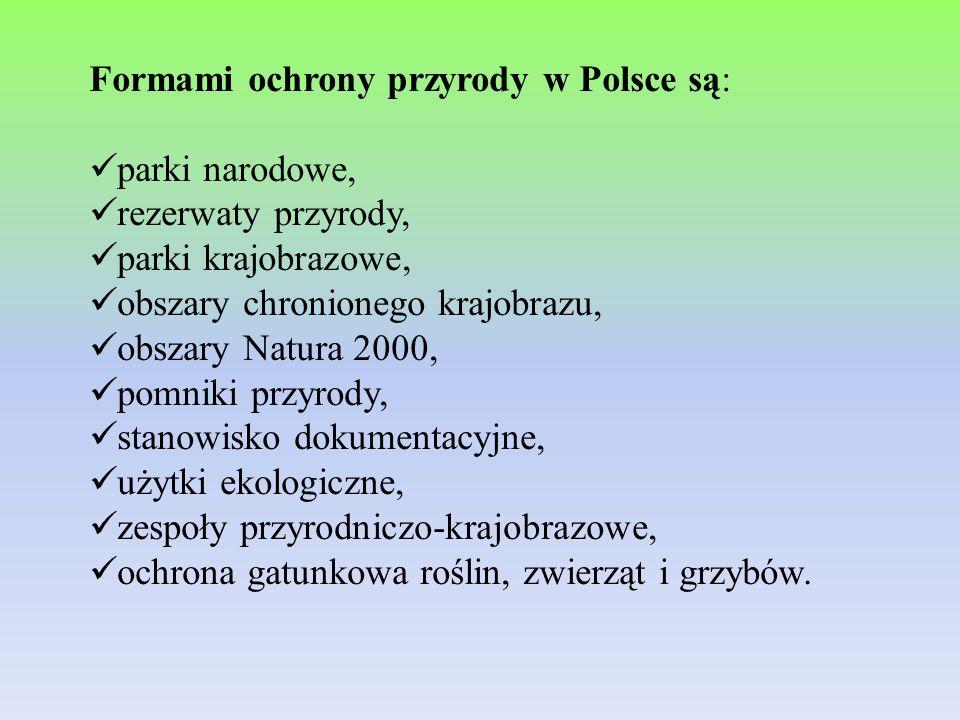 Formami ochrony przyrody w Polsce są: parki narodowe, rezerwaty przyrody, parki krajobrazowe, obszary chronionego krajobrazu, obszary Natura 2000, pom