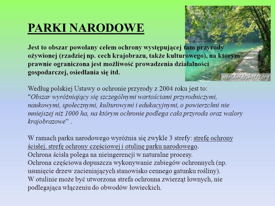 PARKI NARODOWE Jest to obszar powołany celem ochrony występującej tam przyrody ożywionej (rzadziej np. cech krajobrazu, także kulturowego), na którym