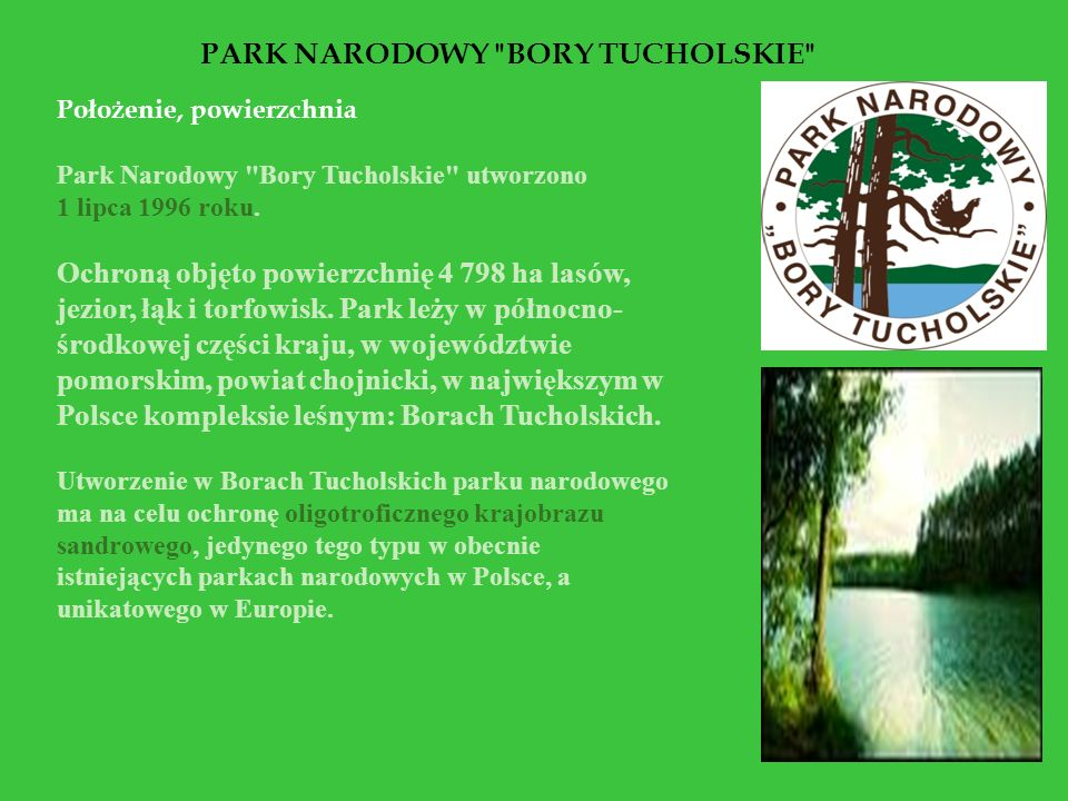 Roślinność Na terenie PNBT wyróżniono 37 zbiorowisk roślinnych.