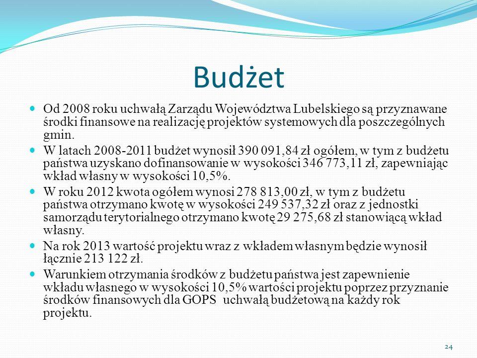 Budżet Od 2008 roku uchwałą Zarządu Województwa Lubelskiego są przyznawane środki finansowe na realizację projektów systemowych dla poszczególnych gmin.