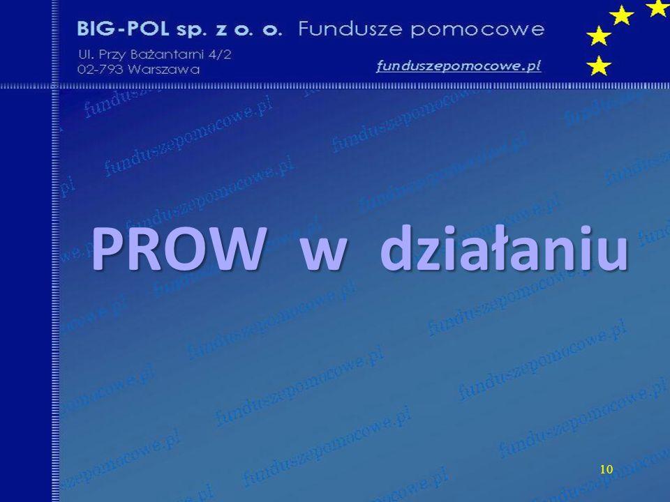 10 PROW w działaniu
