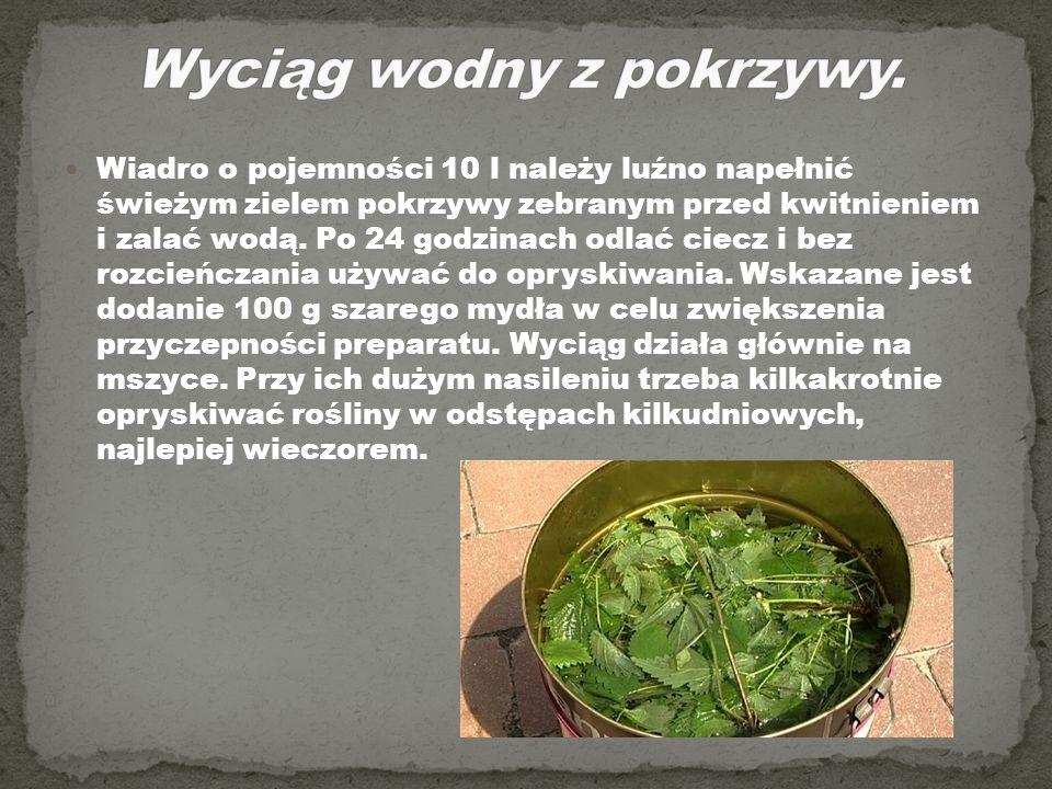 Wiadro o pojemności 10 l należy luźno napełnić świeżym zielem pokrzywy zebranym przed kwitnieniem i zalać wodą. Po 24 godzinach odlać ciecz i bez rozc