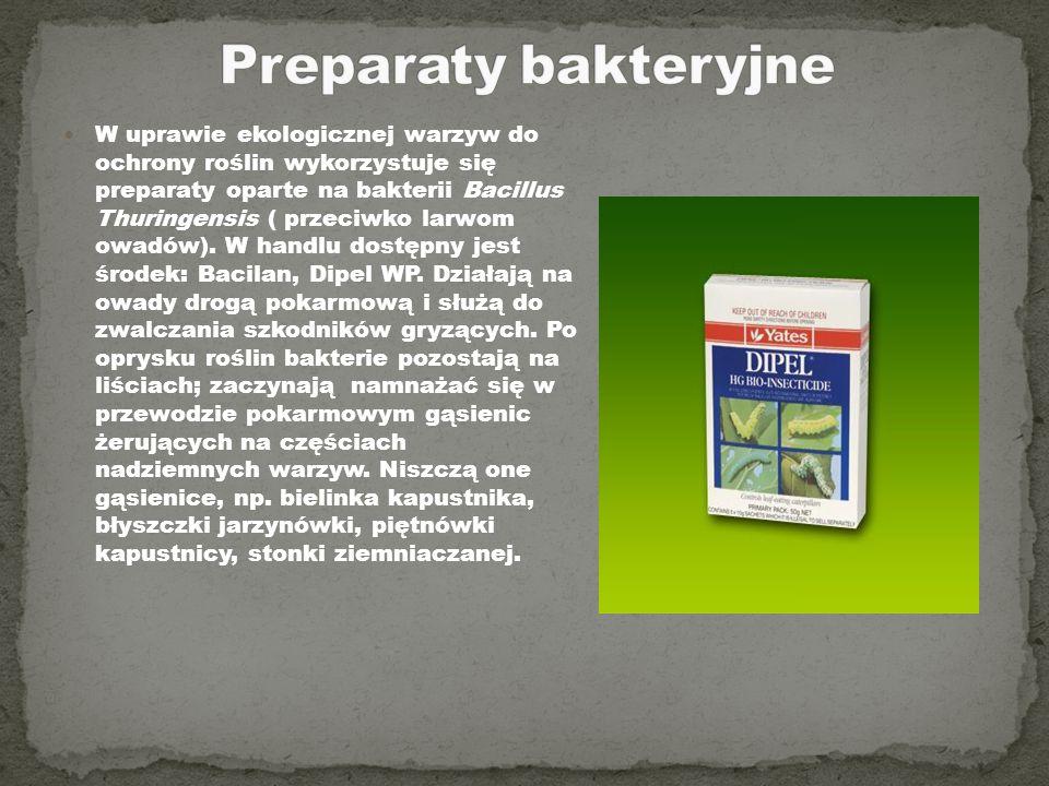W uprawie ekologicznej warzyw do ochrony roślin wykorzystuje się preparaty oparte na bakterii Bacillus Thuringensis ( przeciwko larwom owadów). W hand