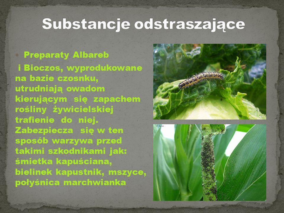 Preparaty Albareb i Bioczos, wyprodukowane na bazie czosnku, utrudniają owadom kierującym się zapachem rośliny żywicielskiej trafienie do niej. Zabezp