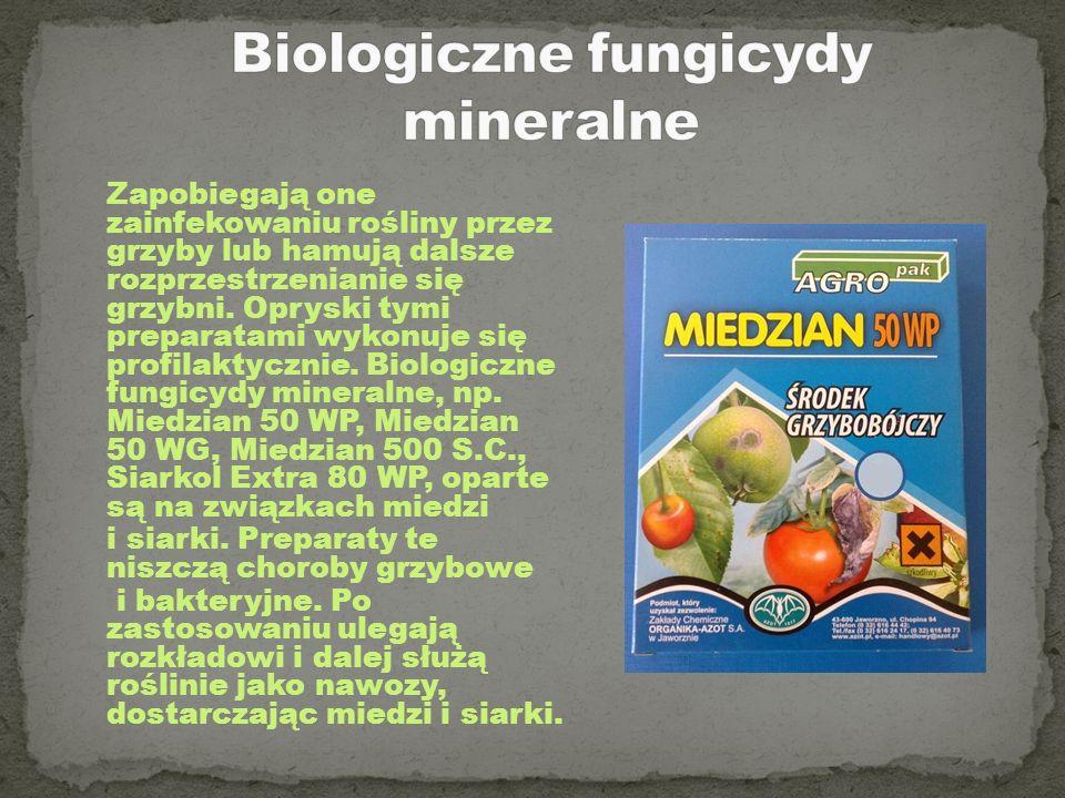 Zapobiegają one zainfekowaniu rośliny przez grzyby lub hamują dalsze rozprzestrzenianie się grzybni. Opryski tymi preparatami wykonuje się profilaktyc