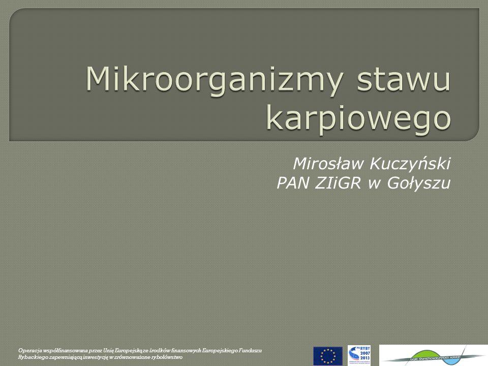 Mirosław Kuczyński PAN ZIiGR w Gołyszu Operacja wspó ł finansowana przez Uni ę Europejsk ą ze ś rodków finansowych Europejskiego Funduszu Rybackiego z