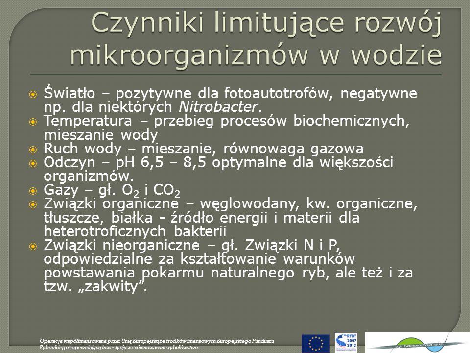 Czynniki wpływające na przejrzystość wody Liczebność i biomasa glonów planktonowych Liczebność i biomasa org.