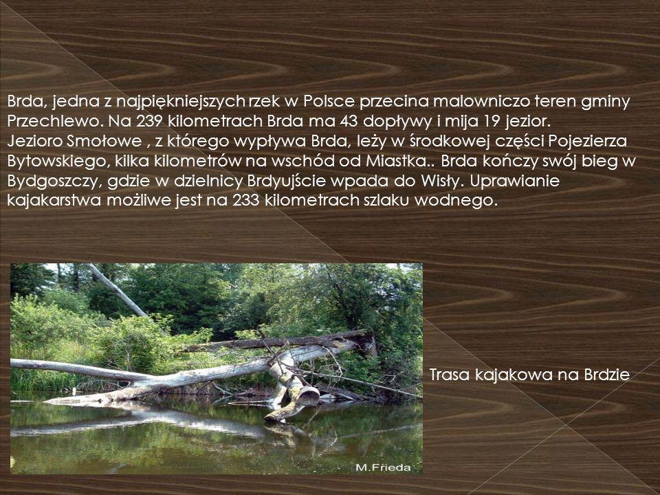 Brda, jedna z najpiękniejszych rzek w Polsce przecina malowniczo teren gminy Przechlewo. Na 239 kilometrach Brda ma 43 dopływy i mija 19 jezior. Jezio