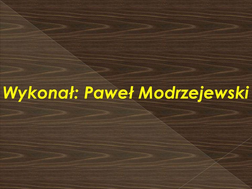 Wykonał: Paweł Modrzejewski