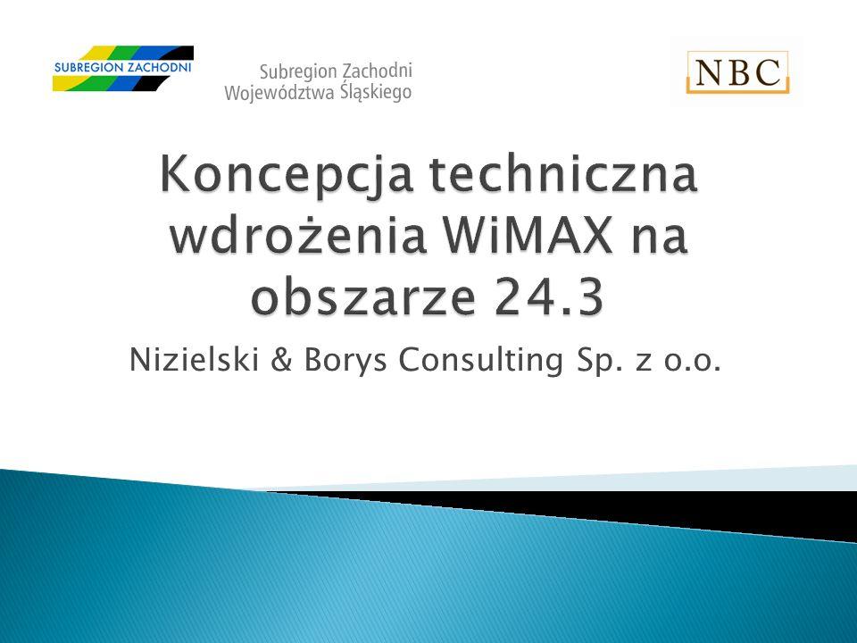 Nizielski & Borys Consulting Sp. z o.o.