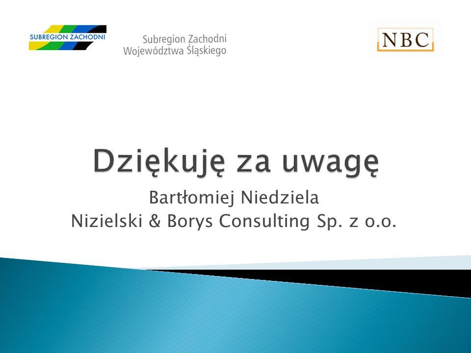 Bartłomiej Niedziela Nizielski & Borys Consulting Sp. z o.o.