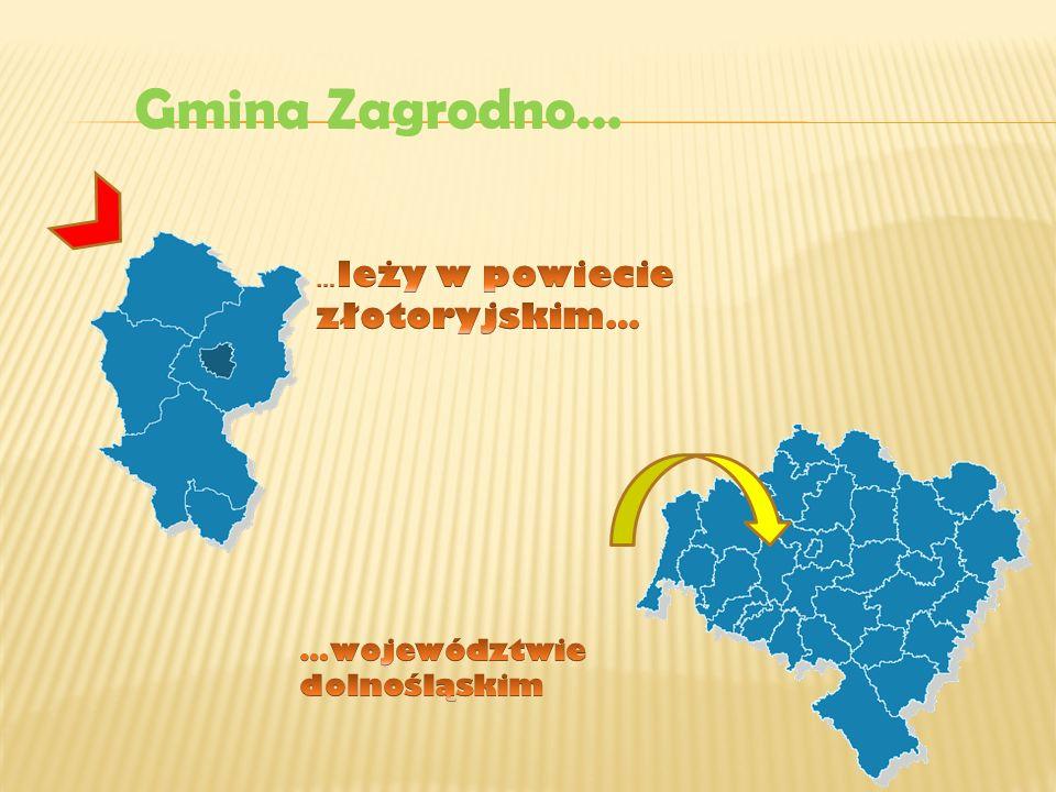 Gminę przecina rzeka Skora, wzdłuż której ulokowały się Modlikowice, Zagrodno, Uniejowice i Jadwisin.