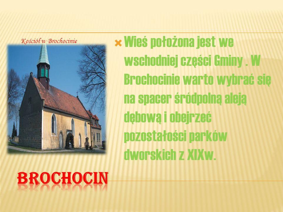 Wieś położona jest we wschodniej części Gminy. W Brochocinie warto wybrać się na spacer śródpolną aleją dębową i obejrzeć pozostałości parków dworskic