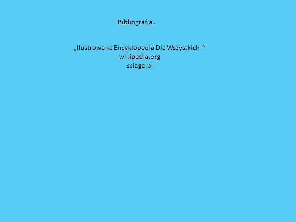Ilustrowana Encyklopedia Dla Wszystkich. wikipedia.org sciaga.pl Bibliografia.