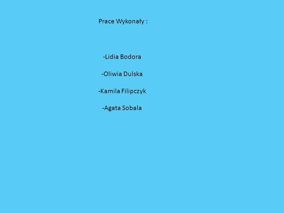 -Lidia Bodora -Oliwia Dulska -Kamila Filipczyk -Agata Sobala Prace Wykonały :