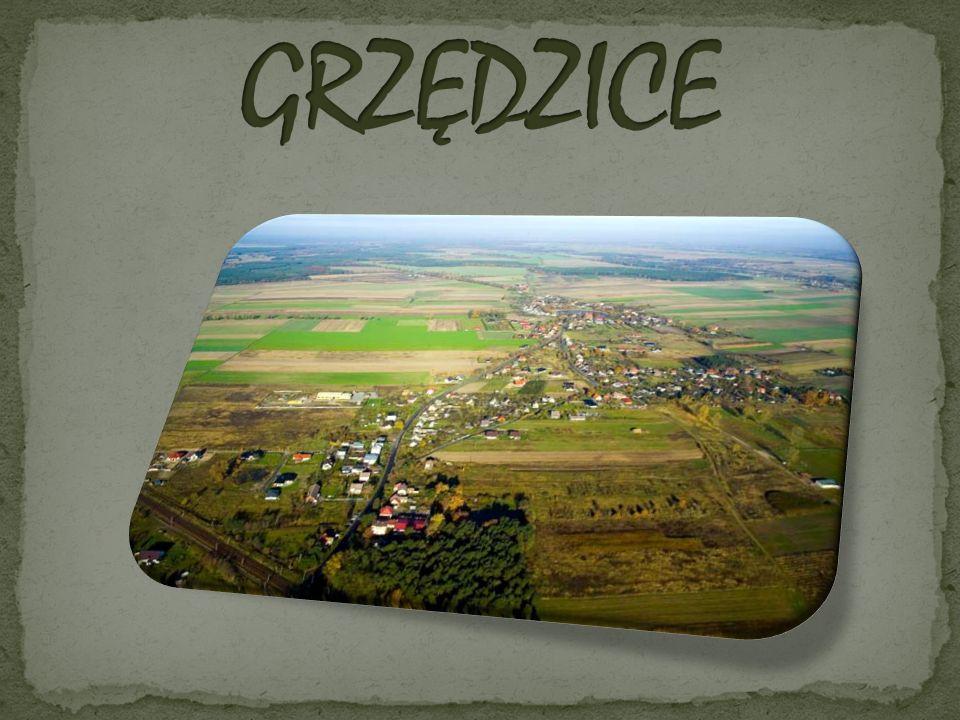 Grzędzice są położone w województwie zachodniopomorskim, w powiecie stargardzkim, w gminie Stargard Szczeciński, przy linii kolejowej Szczecin-Poznań.