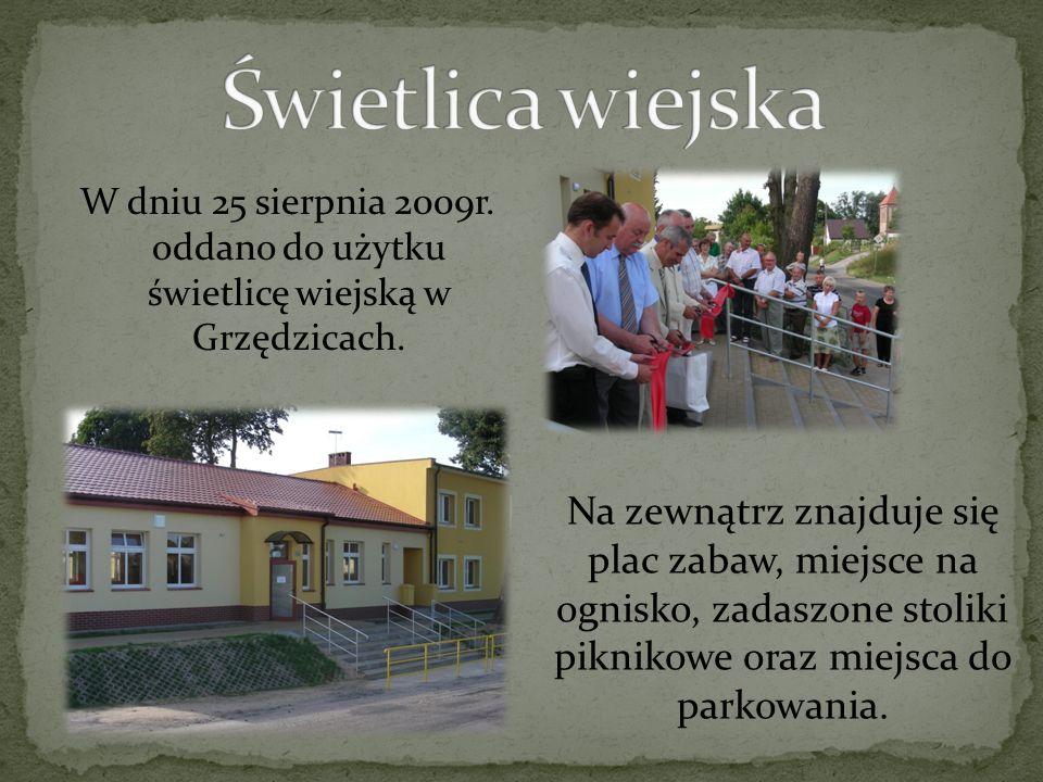 W dniu 25 sierpnia 2009r. oddano do użytku świetlicę wiejską w Grzędzicach. Na zewnątrz znajduje się plac zabaw, miejsce na ognisko, zadaszone stoliki