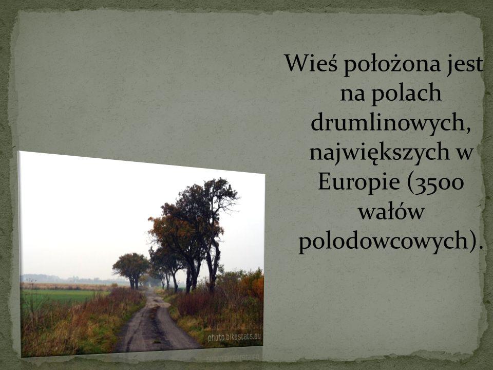 Wieś położona jest na polach drumlinowych, największych w Europie (3500 wałów polodowcowych).