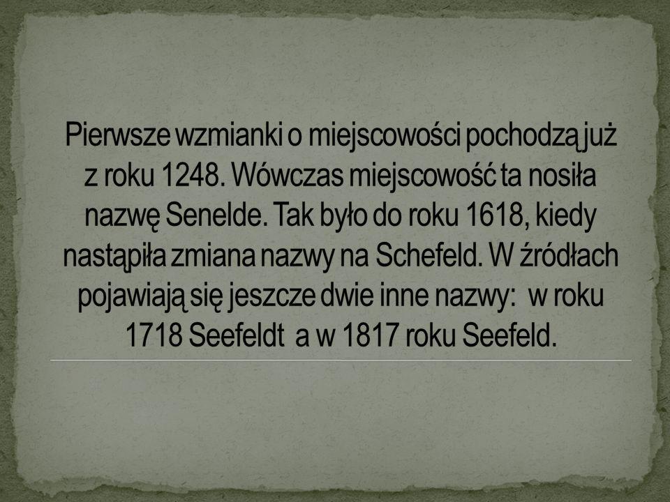 LZS powstał ok.1953. Założycielem Klubu był pan Stachowiak Zbigniew.