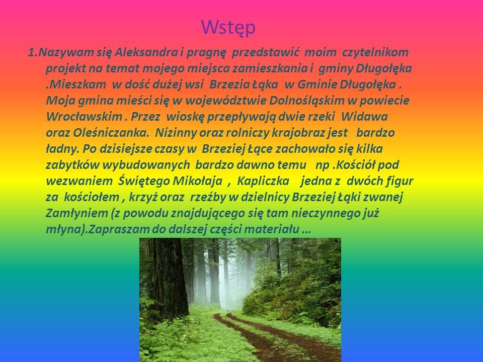 Przykłady miejsc w których obserwujemy korzystne lub niekorzystne zmiany w środowisku przyrodniczym W mojej miejscowości można zaobserwować korzystnei niekorzystne zmiany w środowisku przyrodniczym np.