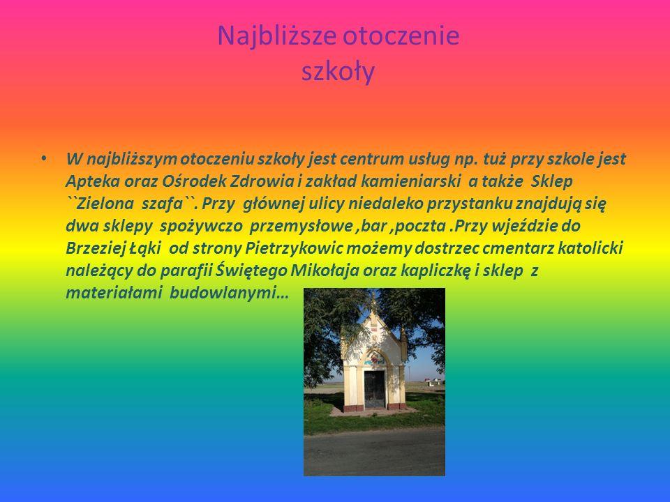 Najbliższe otoczenie sąsiedztwo Sąsiedzwto : w najbliższym sąsiedztwie mojego domu znajduje się Świetlica Wiejska oraz obiekt sportowy Orlik i budynki