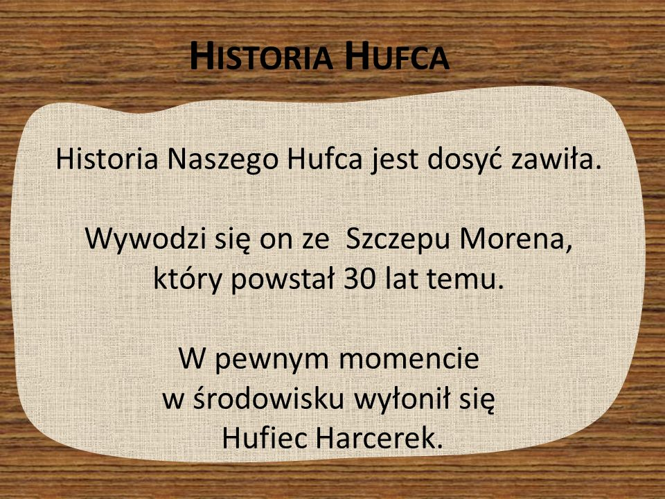 Historia Naszego Hufca jest dosyć zawiła. Wywodzi się on ze Szczepu Morena, który powstał 30 lat temu. W pewnym momencie w środowisku wyłonił się Hufi