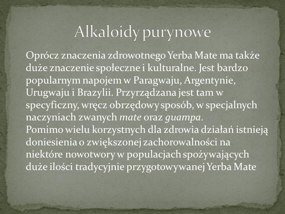 Oprócz znaczenia zdrowotnego Yerba Mate ma także duże znaczenie społeczne i kulturalne.